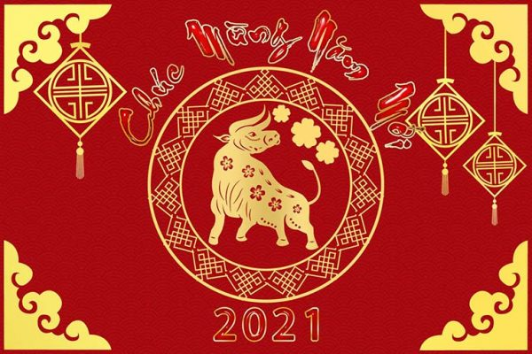 mau-banner-chuc-mung-nam-moi-tan-suu-2023-1